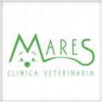 Mares, Clínica Veterinaria